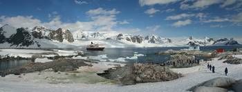 Panorama - penguin colonies, cruise ship & tourist