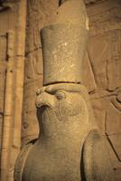 Statue of the Egyptian hawk headed god, Horus
