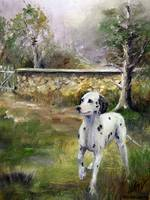 English Countryside- Dalmatian Dog SM Violano