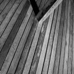 """""""wood"""" by colekins"""