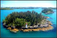 Bermuda Beauty
