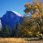 """Half Dome in Autumn"" by kristakennell"