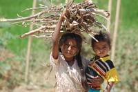 Girl carrying firewood and child