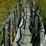 """bridge to nowhere"" by georgekaplanimages"