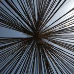 """TORNAC BAMBOO ROOF"" by matthieu"
