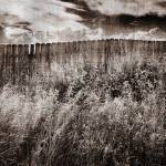 """Fence"" by LawnoveN"