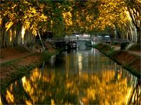 Canal d'or / Golden channel
