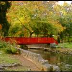 """""""Red Bridge"""" by SDPhotography"""