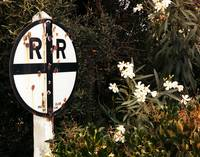 RRsign w Wht Flowers