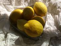Lemons in the early day