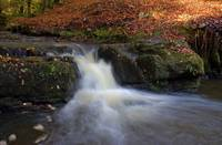 Falls at Beeslack Woods
