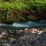 """""""Trickle creek"""" by garrykinney"""