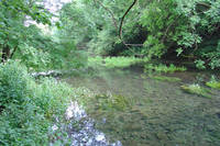 The River Lathkill  (14621-RDA)
