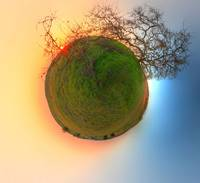 Planet Old Oak at Sunset