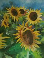 sunflowers08
