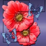 """image kind flower"" by Trish3D"