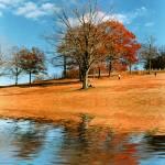 """""""PoundRidge Fall"""" by Trish3D"""