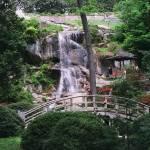 """Waterfall"" by kshapero"
