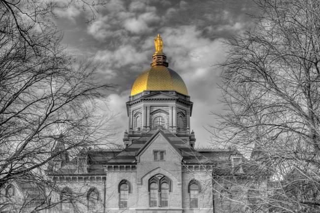 Notre Dame Wall Art the golden dometony dal ponte