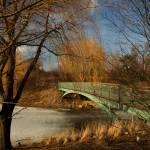 """""""bridge for my sweetie"""" by fjsjr"""