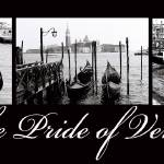 """The Pride of Venice"" by whatisee4u"