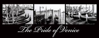 The Pride of Venice