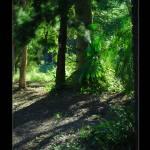 """Filtered Afternoon"" by DavidBleakley"
