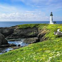 """Yaquina Head Lighthouse in Spring"" by pbk"