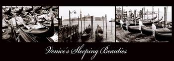 Venices sleeping beauties