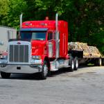 """""""Red Pete With a Step Deck and Split Axle"""" by eyeinidas"""