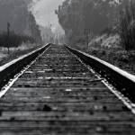 """Railroad tracks besides Hwy 1 heading to San Franc"" by vegasjunkie001"
