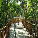 """""""Jungle Walk"""" by vegasjunkie001"""