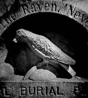 The Raven, at Edgar A. Poe's Original Gravesite