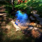 """Creek Colors"" by beaman"