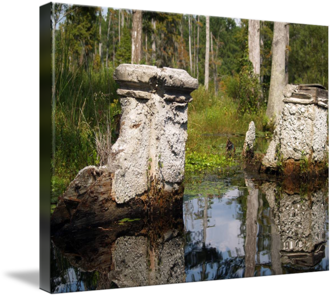 South Carolina Cypress Gardens Ruins Photo By Gine By Ginette Callaway