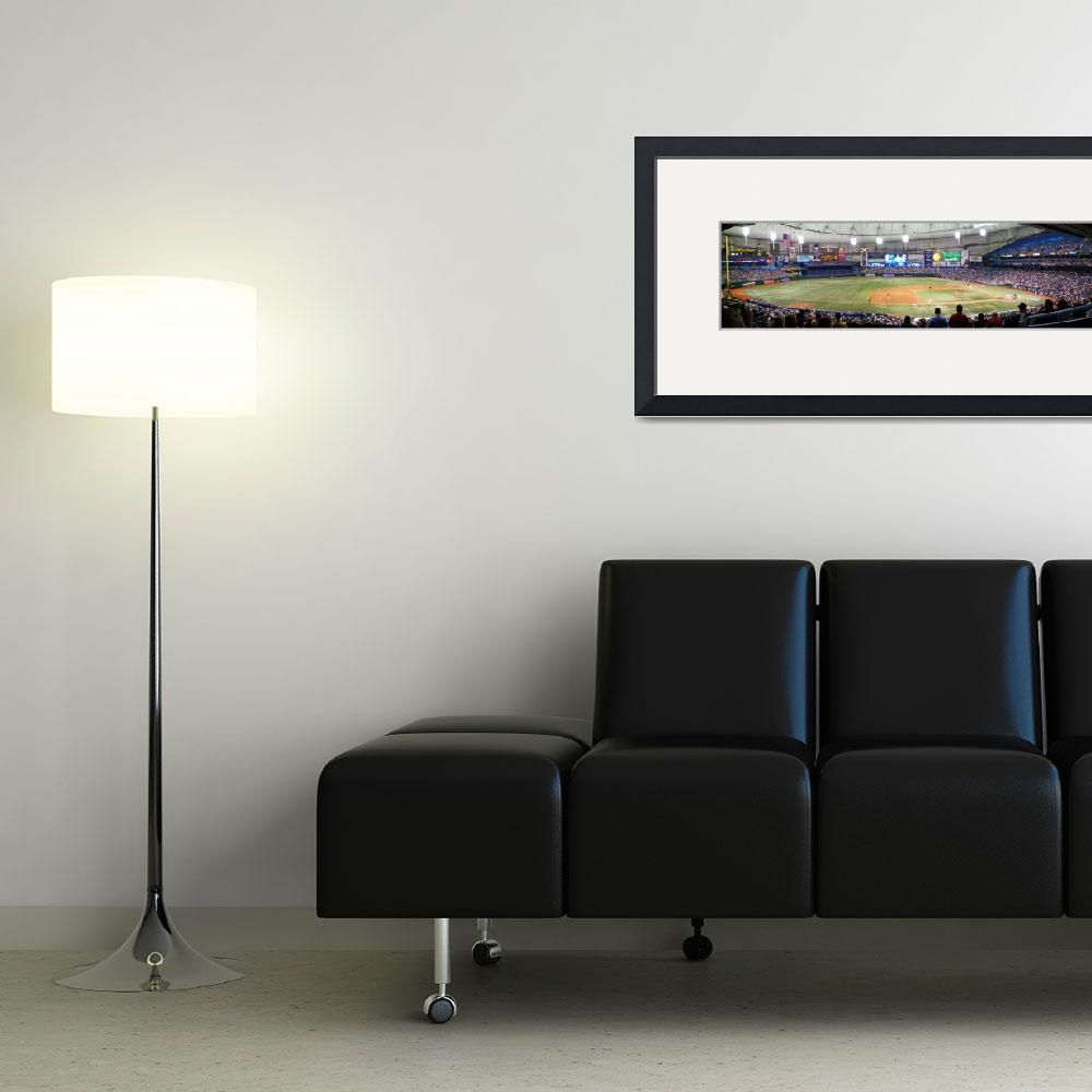 """Tropicana Field Panoramic&quot  (2008) by christophertaylorphotography"