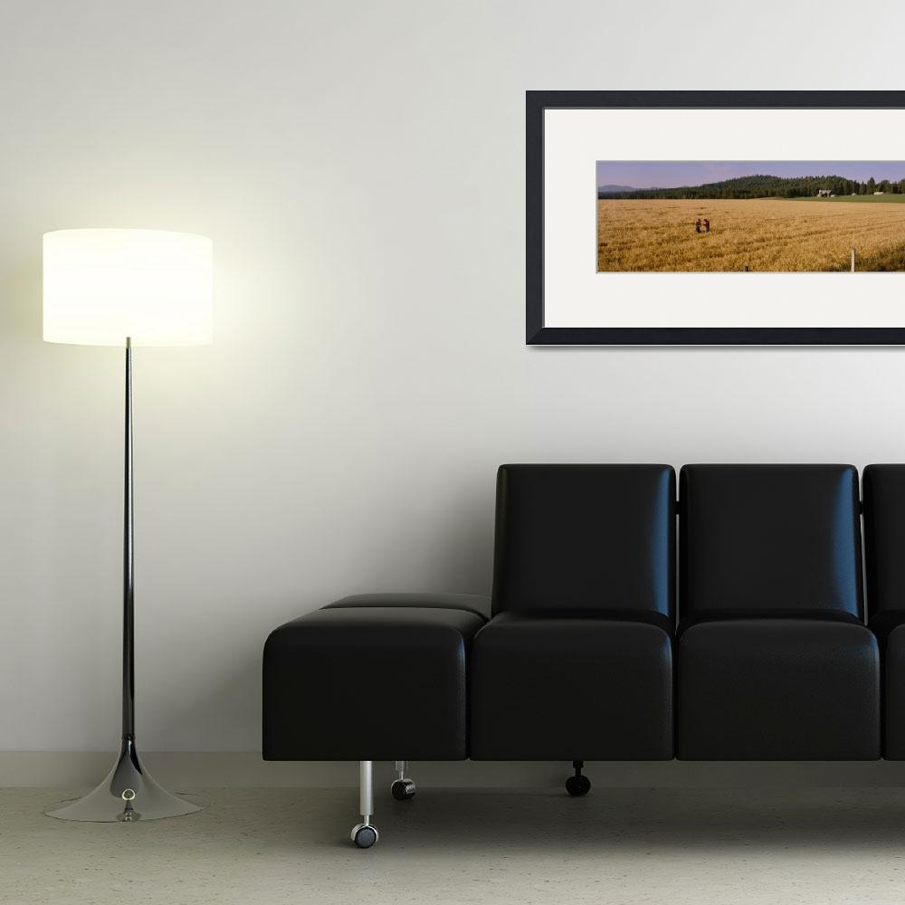 """Barley Farmers WA&quot  by Panoramic_Images"