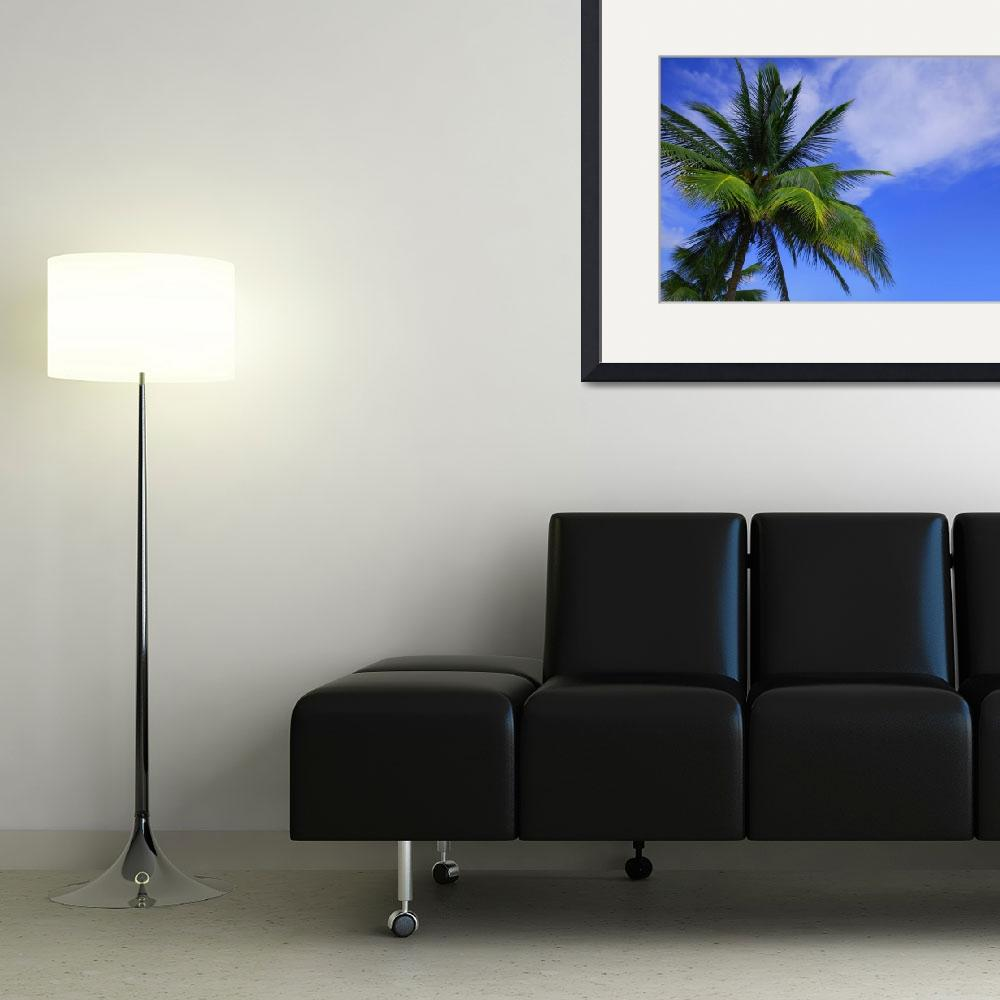 """Palm Tree Against Perfect Sky&quot  by DesignPics"
