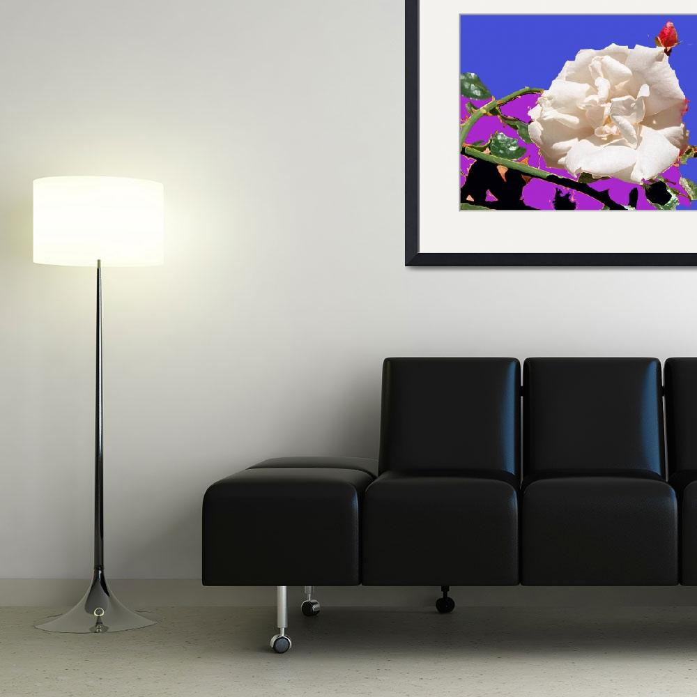 """White Rose abstraction&quot  by Wendy_Ferguson"