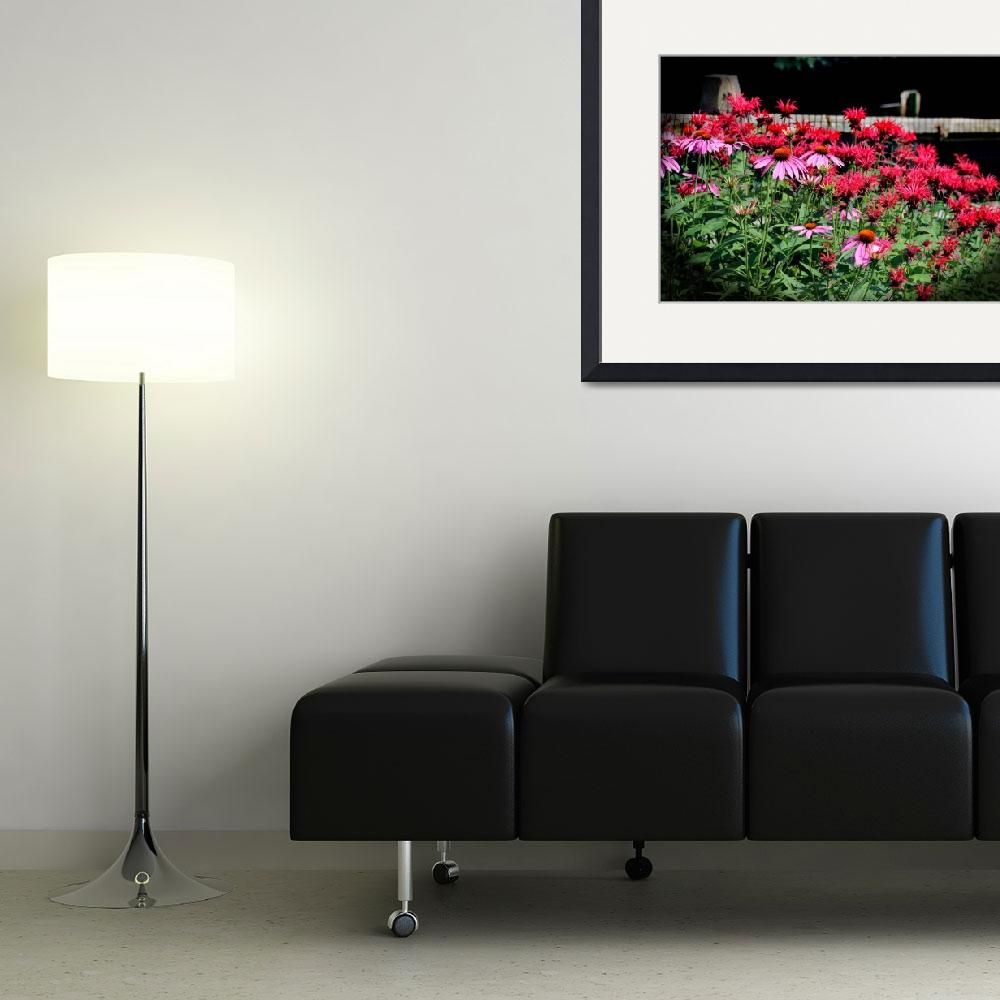 """Echinacea and Monarda in Summer Garden&quot  (2015) by KsWorldArt"