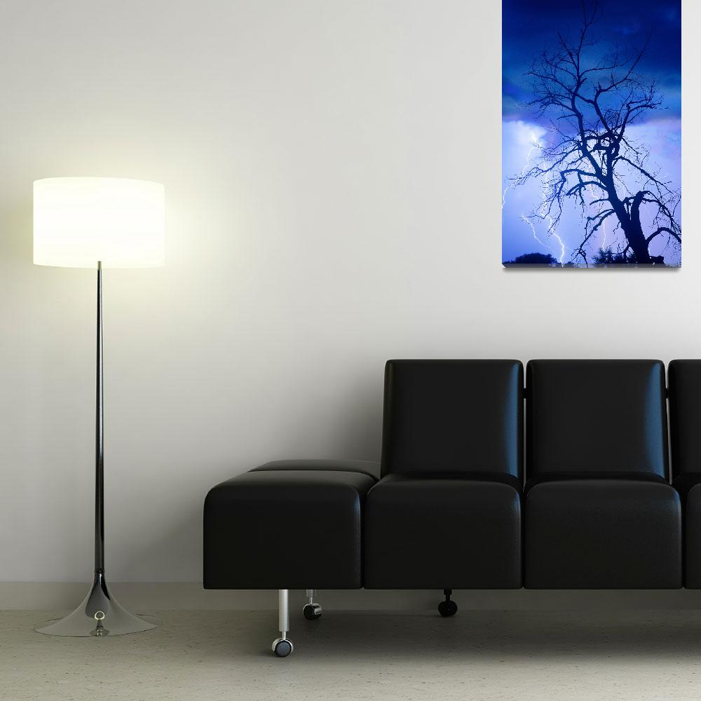 """Lightning Tree Silhouette Portrait&quot  (2011) by lightningman"