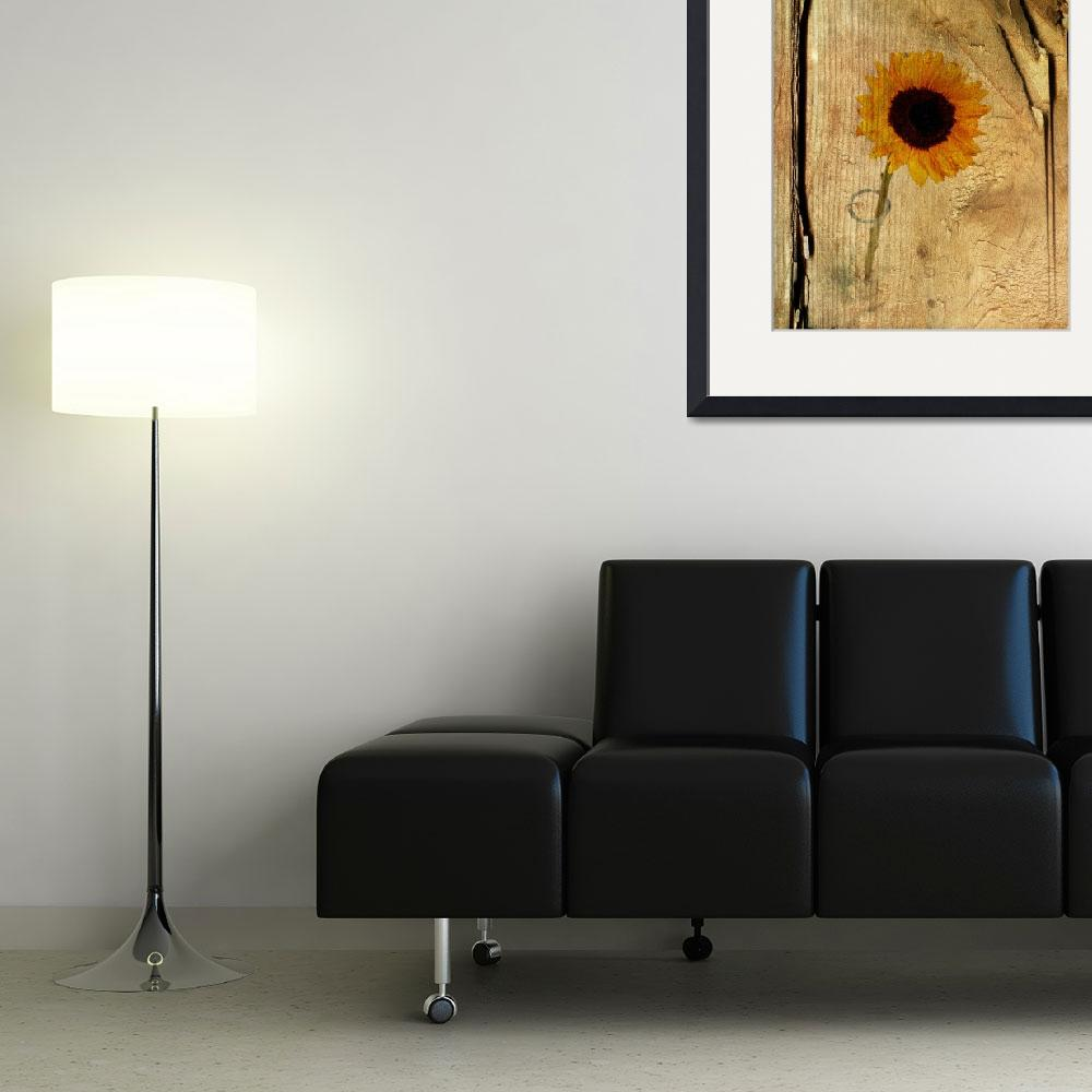 """Sunflower&quot  (2011) by ianjeffrey"