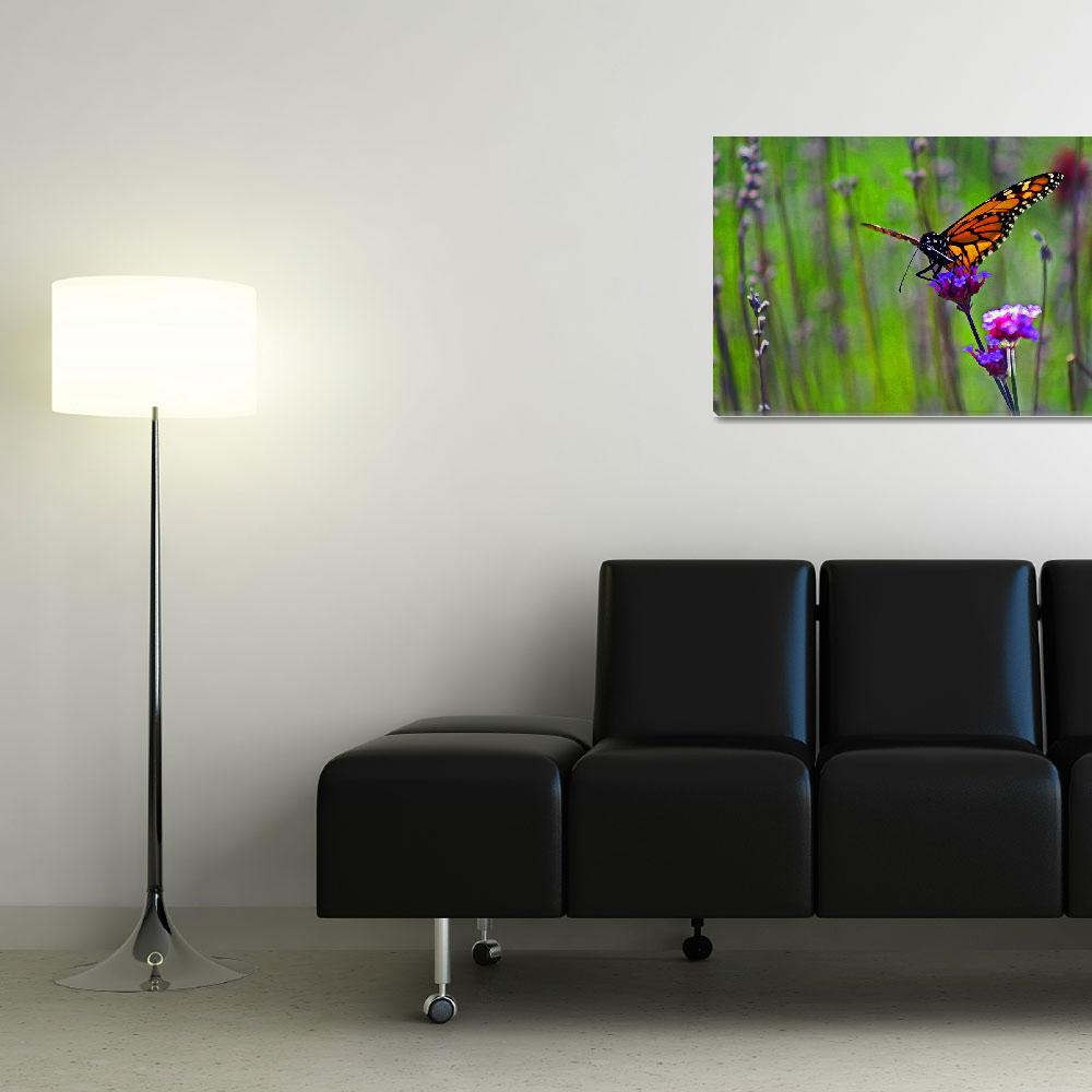 """Butterfly  Monarch in Field&quot  (2011) by KsWorldArt"
