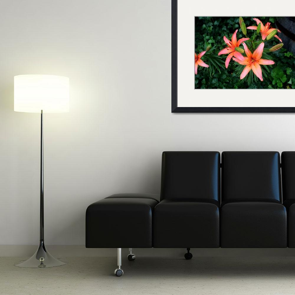 """Lillies&quot  (2009) by sherryswest"