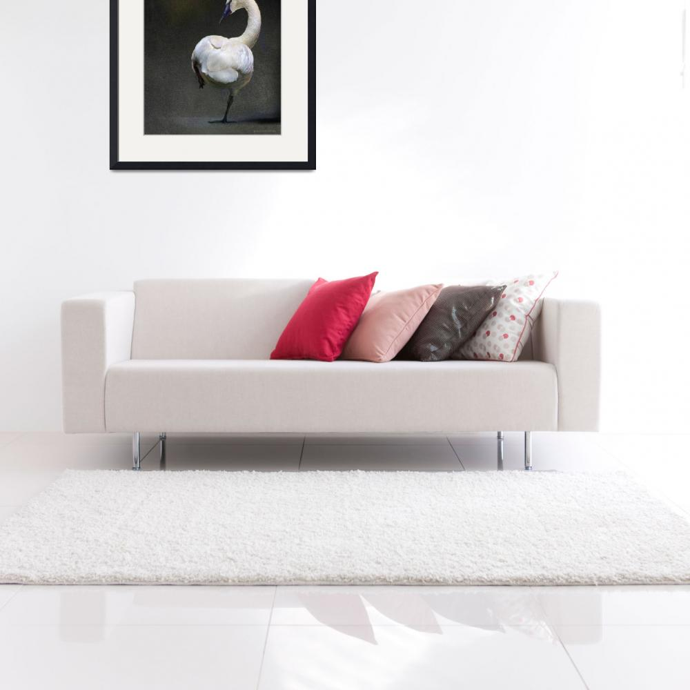 """swan study variation&quot  (2013) by rchristophervest"