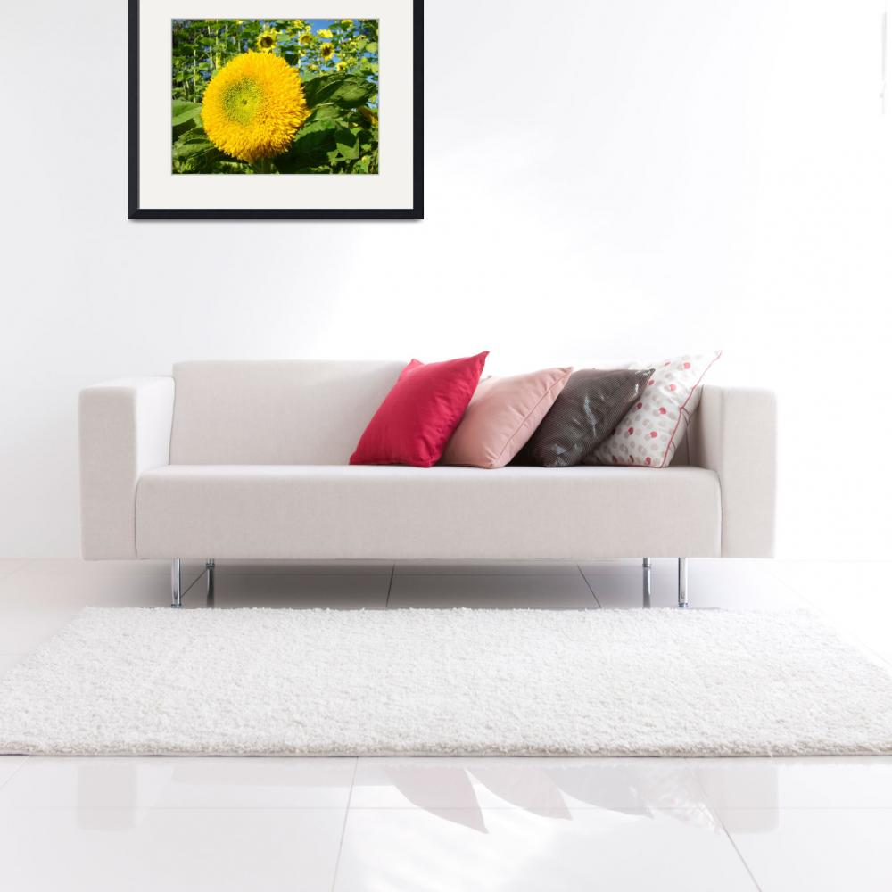 """OFFICE ART PRINTS SUNFLOWER YELLOW Baslee Troutman&quot  (2009) by BasleeTroutman"