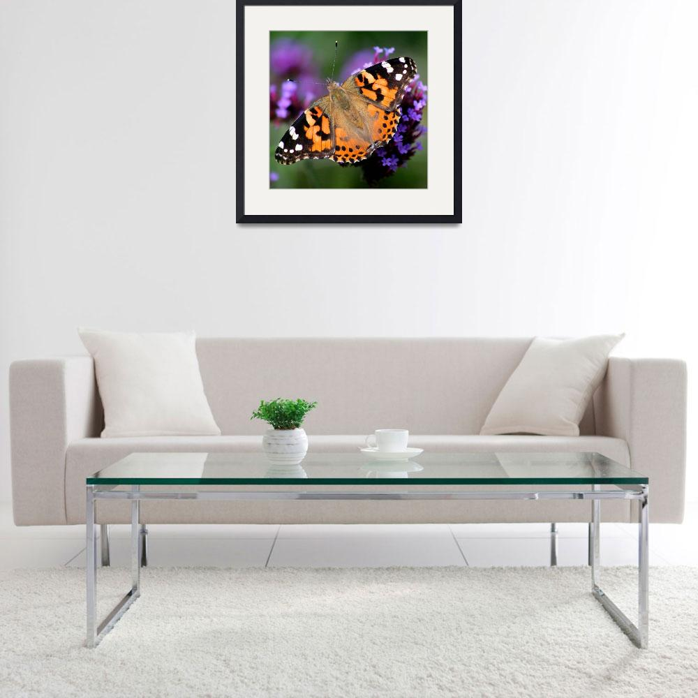 """Square American Painted Lady Butterfly&quot  (2013) by KsWorldArt"