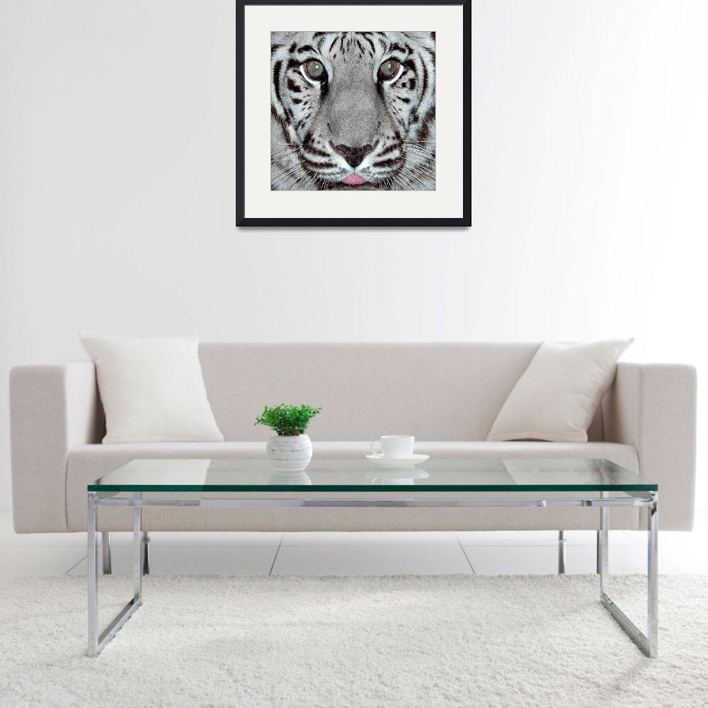 """White Tiger&quot  by toots"