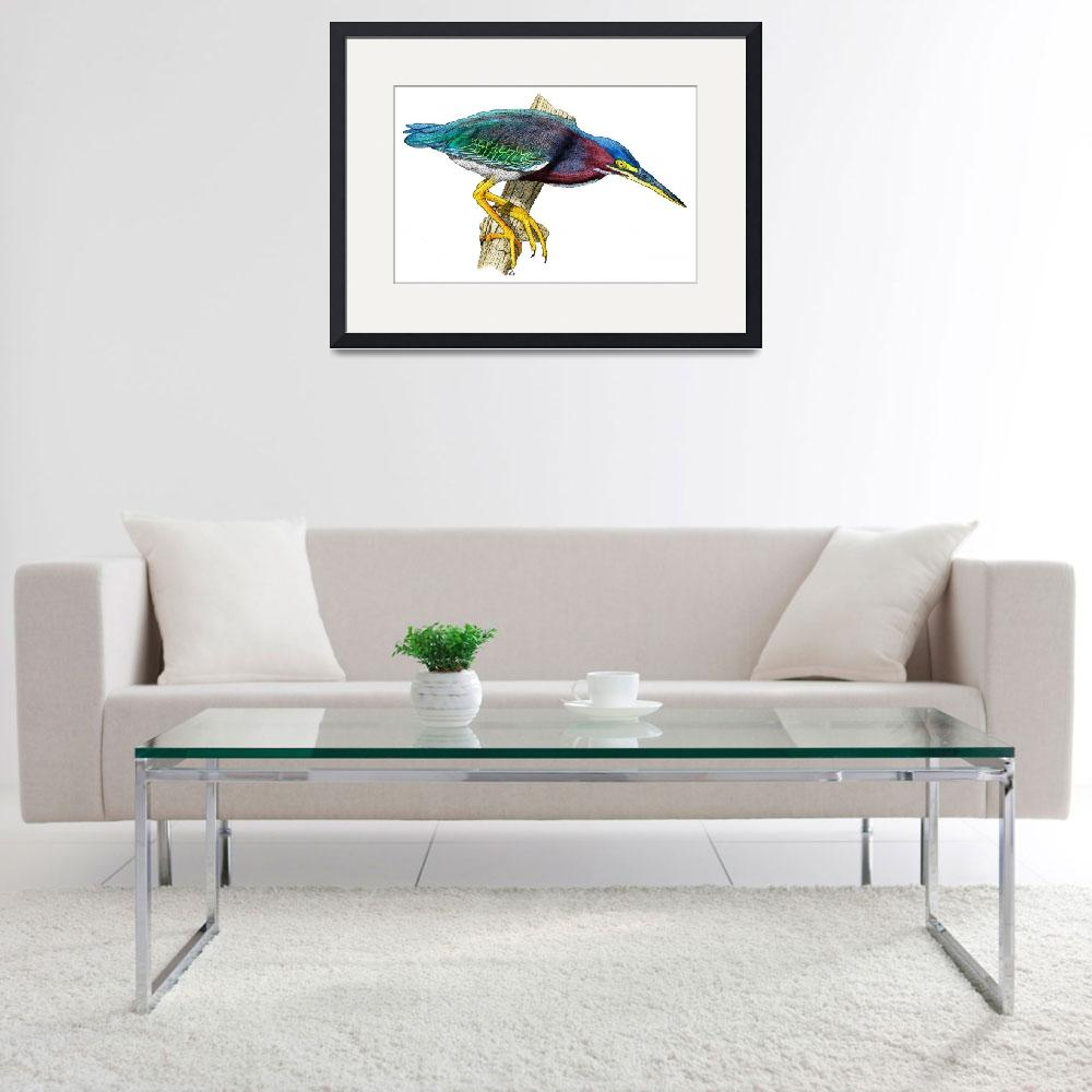 """Green Heron&quot  (2009) by inkart"