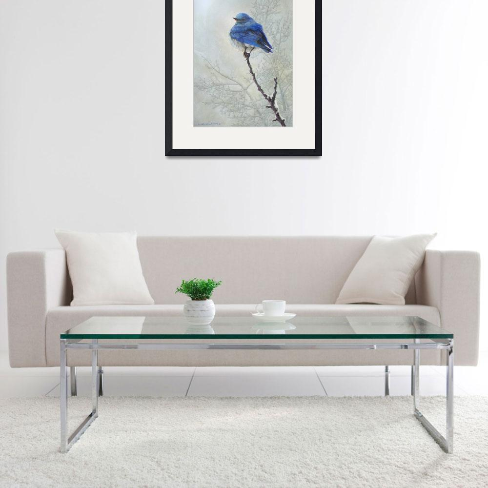 """delicate perch 2 / mountain bluebird&quot  (2011) by rchristophervest"
